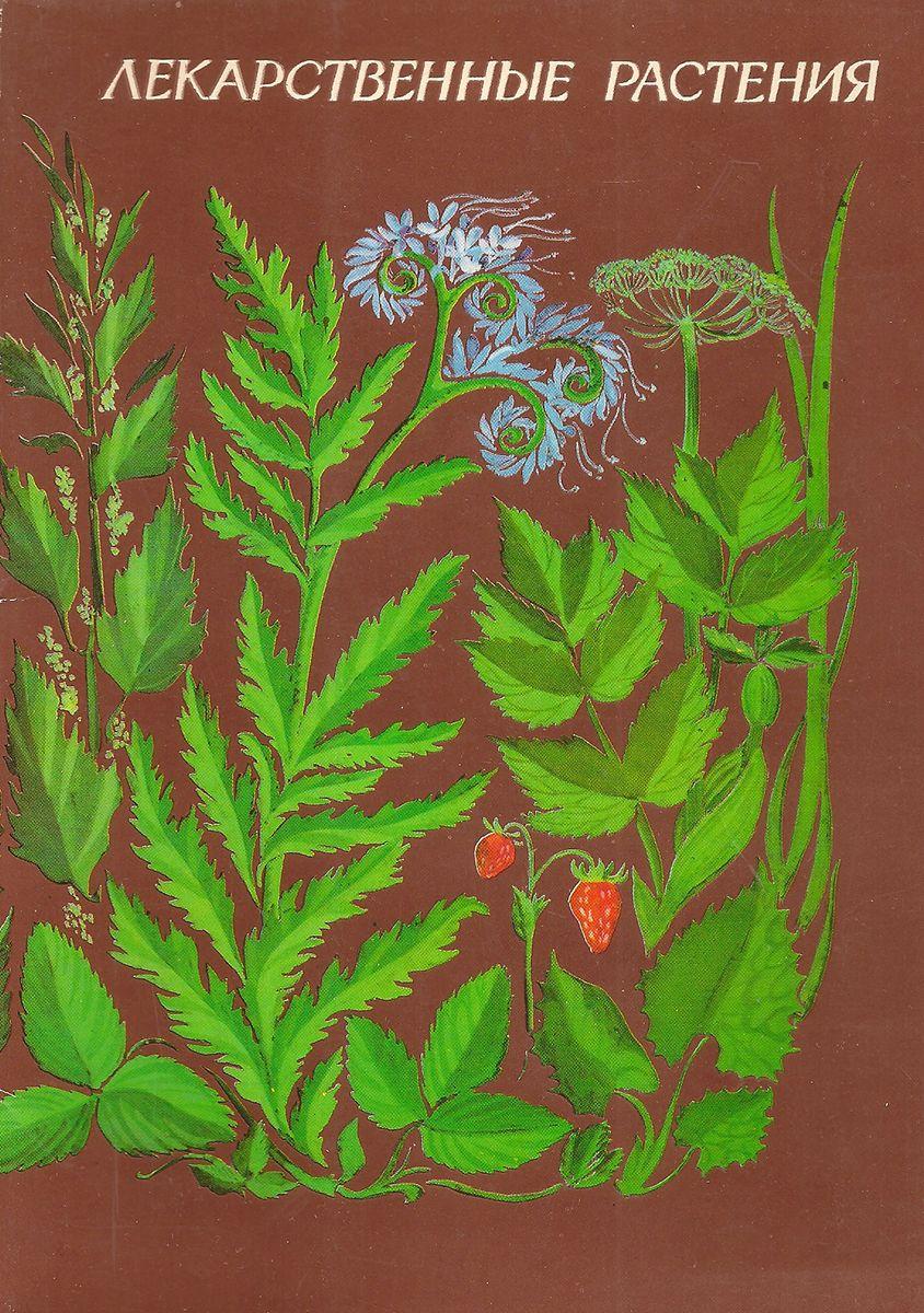 Открытки лекарственные растения, поднимаю свой