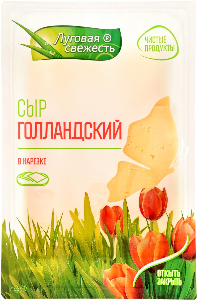 Луговая Свежесть Сыр Голландский, 45%, нарезка, 125 г все мыши любят сыр