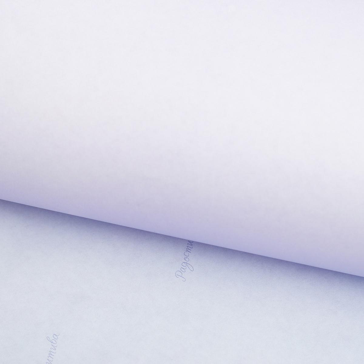 Крафт-бумага Дарите Счастье Пантон. Нежная лаванда, цветная, двусторонняя, 50 х 70 см2741517Любой подарок начинается с упаковки. Что может быть трогательнее и волшебнее, чем ритуал разворачивания полученного презента. И именно оригинальная, со вкусом выбранная упаковка выделит ваш подарок из массы других. Она продемонстрирует самые теплые чувства к виновнику торжества и создаст сказочную атмосферу праздника. Рекомендуем!