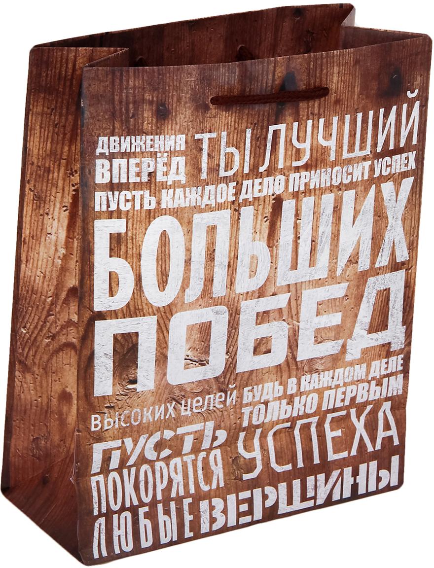 Пакет подарочный Дарите Счастье Больших побед, цвет: мультиколор, 23 х 8 х 27 см. 2584320