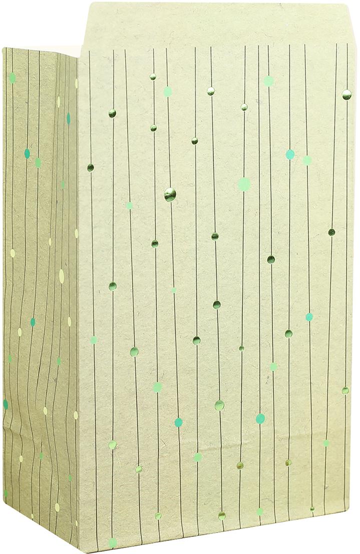Пакет подарочный, цвет: зеленый, 20 х 13 х 7,5 см. 2654351