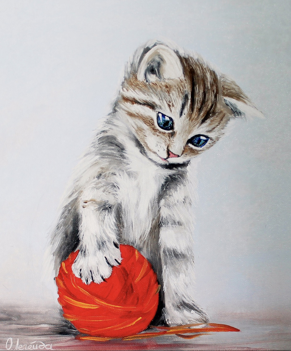 Набор для рисования по номерам Цветной Котенок с красным клубком, 40 х 50 см набор для рисования по номерам цветной милый котенок 40 х 50 см