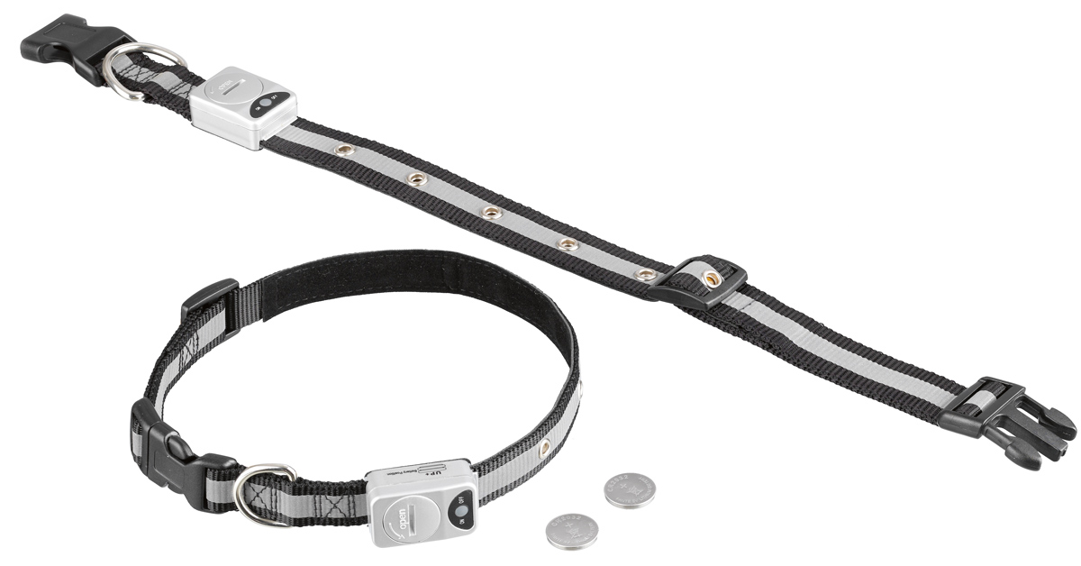 Ошейник Nobby, для собак, светодиодный, на батарейках, цвет: белый, черный, обхват шеи 55-70 см ошейник воротника cylion 120 мл