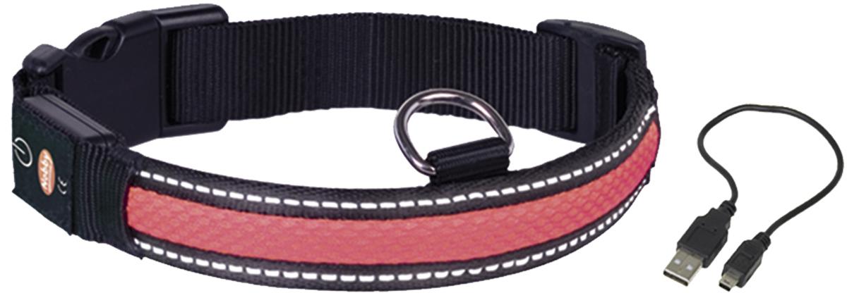 Ошейник Nobby, для собак, светодиодный, на аккумуляторах, цвет: красный, обхват шеи 45-61 см поводок nobby для собак светодиодный на аккумуляторах цвет зеленый длина 120 см