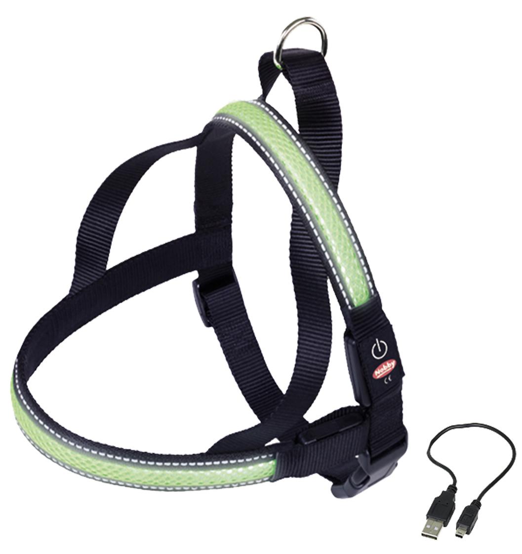 Шлейка Nobby, для собак, светодиодный, на аккумуляторах, цвет: зеленый, обхват шеи 50-66 см поводок nobby для собак светодиодный на аккумуляторах цвет зеленый длина 120 см