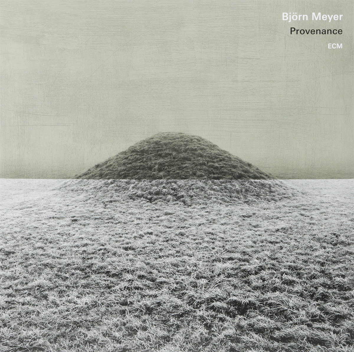Bjorn Meyer Meyer. Provenance (LP)