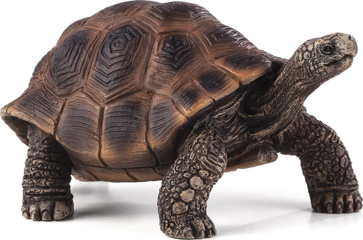 Mojo Фигурка Гигантская черепаха