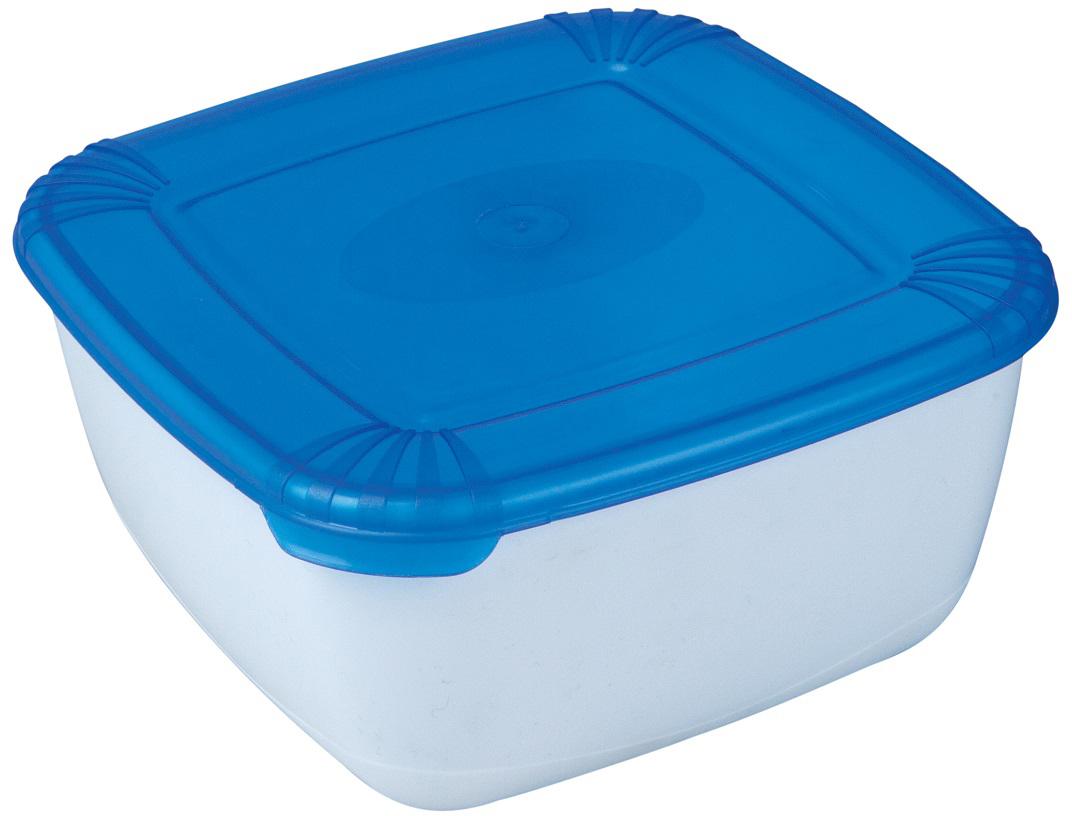 Контейнер пищевой Plast Team Polar, цвет: голубой, прозрачный, 950 мл контейнер пищевой plast team цвет голубой прозрачный 0 6 л