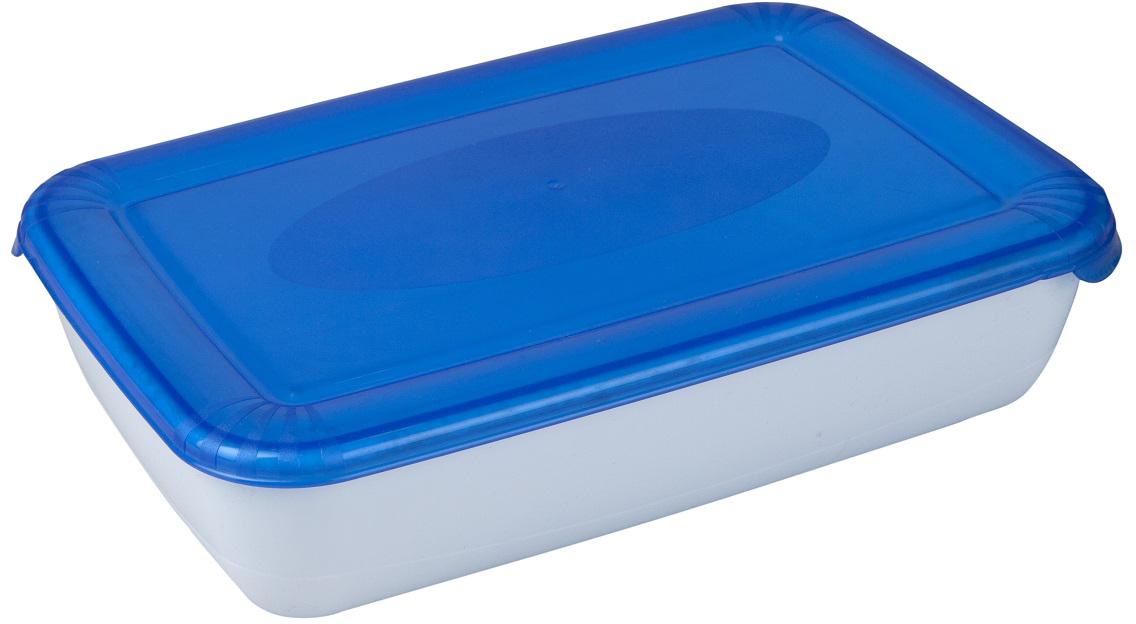 Контейнер пищевой Plast Team Polar, цвет: голубой, прозрачный, 0,45 л контейнер пищевой plast team цвет голубой прозрачный 0 6 л