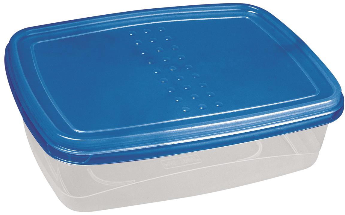 Контейнер пищевой Plast Team Pattern Flex, цвет: голубой, прозрачный, 1,3 л контейнер пищевой plast team цвет голубой прозрачный 0 6 л