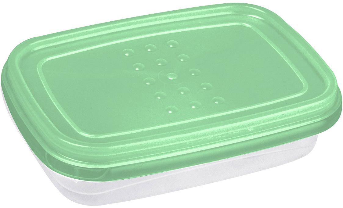 Контейнер пищевой Plast Team Pattern Flex, цвет: мятный, 0,3 лPT1130/КМТ-22Гибкая крышка, выполненная из полиэтилена, буквально натягивается на контейнеры, обеспечивая плотное прилегание к корпусу. Контейнеры предназначены для хранения в холодильнике и разогрева в СВЧ (без крышки).