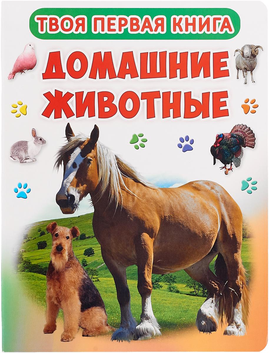 Твоя первая книга. Домашние животные