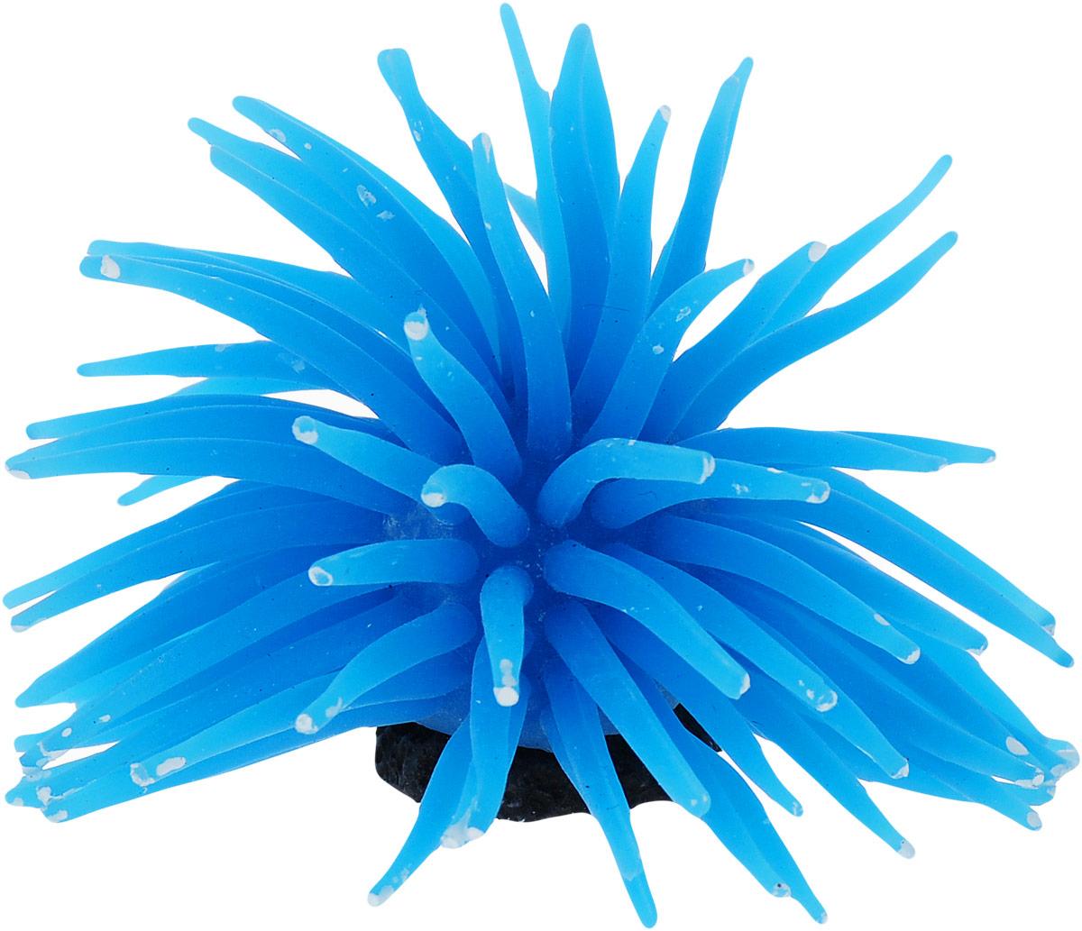 Коралл для аквариума Уют Разноцветные щупальца, силиконовый, цвет: голубой, 8 х 8 х 7 см подстаканник сергей 11 8 х 7 8 х 7 3 см 2494361