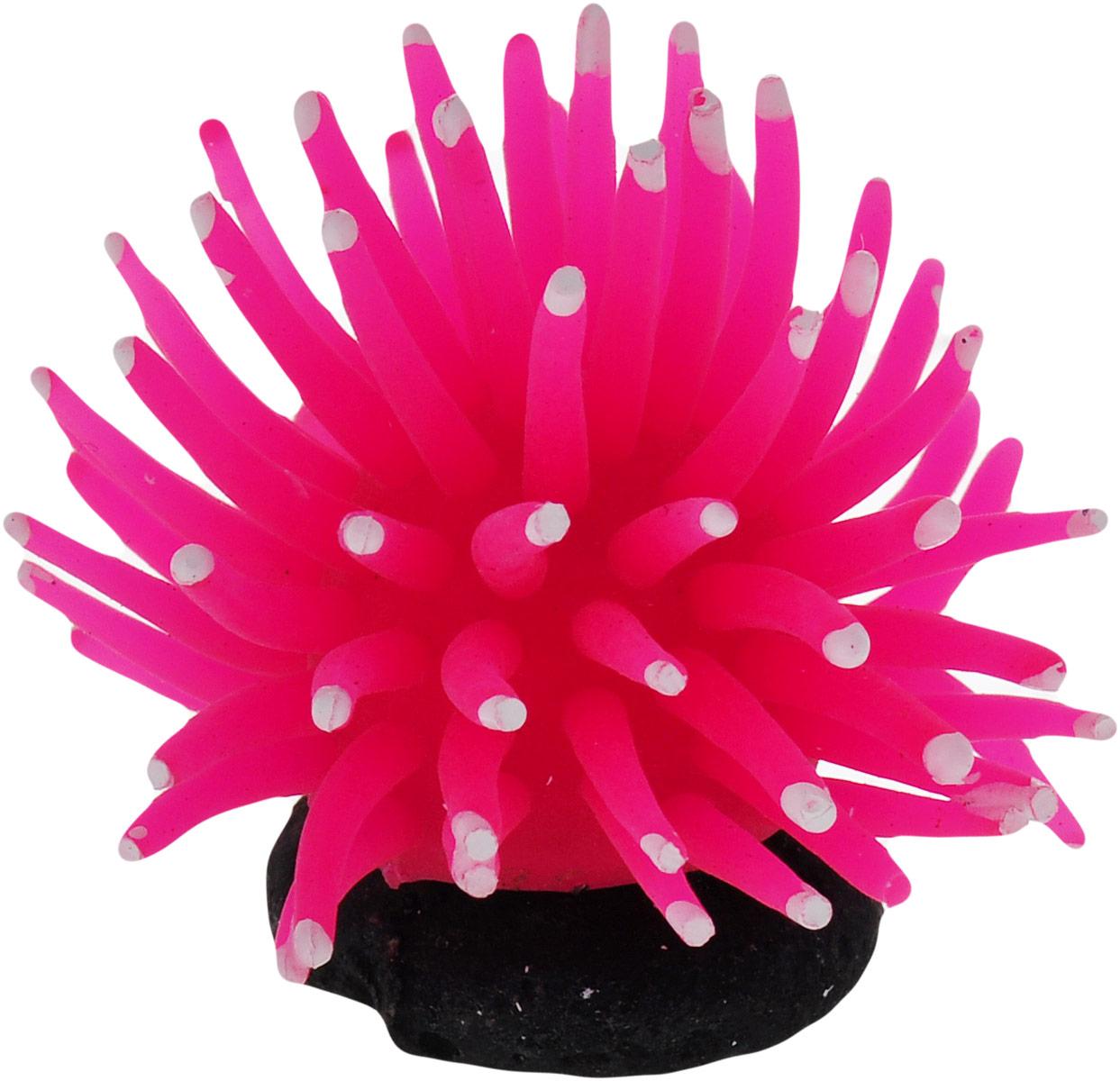 Коралл для аквариума Уют Разноцветные щупальца, силиконовый, цвет: розовый, 5 х 5 х 4 см средство для чистки барабанов стиральных машин nagara 5 х 4 5 г