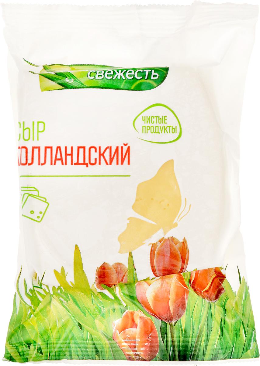 Луговая Свежесть Сыр Голландский, 45%, 225 г все мыши любят сыр