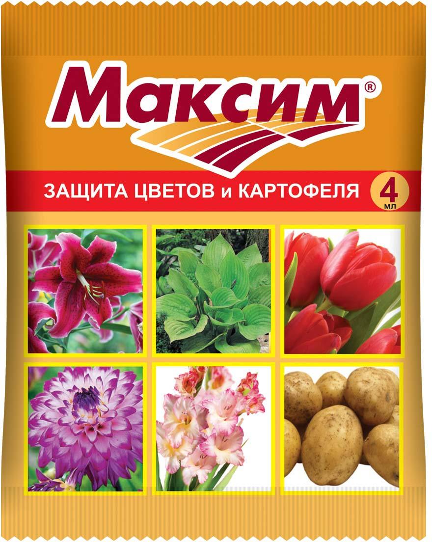 Препарат для защиты растений Ваше хозяйство Максим, от болезней, 4 мл регулятор роста и развития растений ваше хозяйство биосил 10 мл