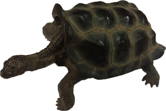 Декорация для аквариума Meijing Aquarium Галапагосская черепа х а большая, 17 11 9,5 см