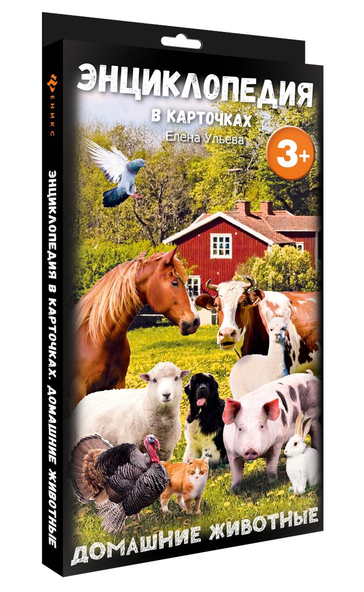 Феникс Обучающая игра Энциклопедия в карточках Домашние животные