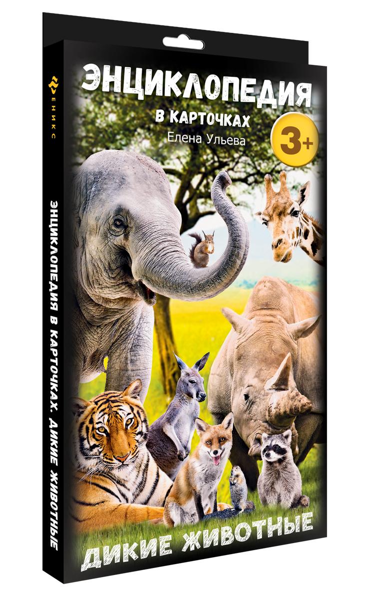 Феникс Обучающая игра Энциклопедия в карточках Дикие животные