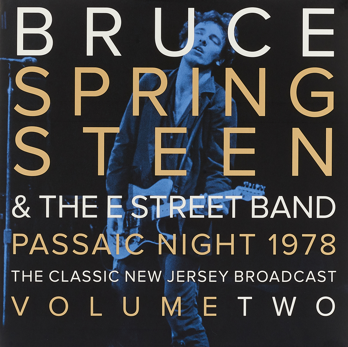 Брюс Спрингстин Bruce Springsteen. Passaic Night 1978 The Classic New Jersey Broadcast Volume Two (2 LP) цена