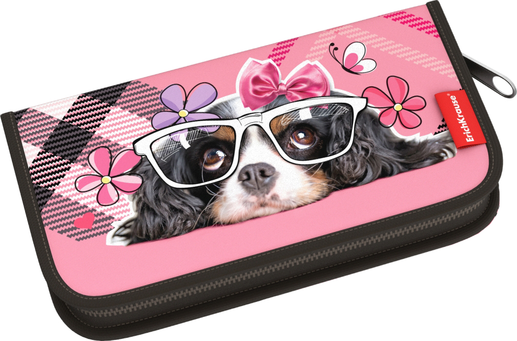 Пенал-книжка ErichKrause Clever Dog, без наполнения, 11 x 20,5 x 2,5 см пенал книжка erichkrause clever dog без наполнения 13 5 х 20 5 х 3 см