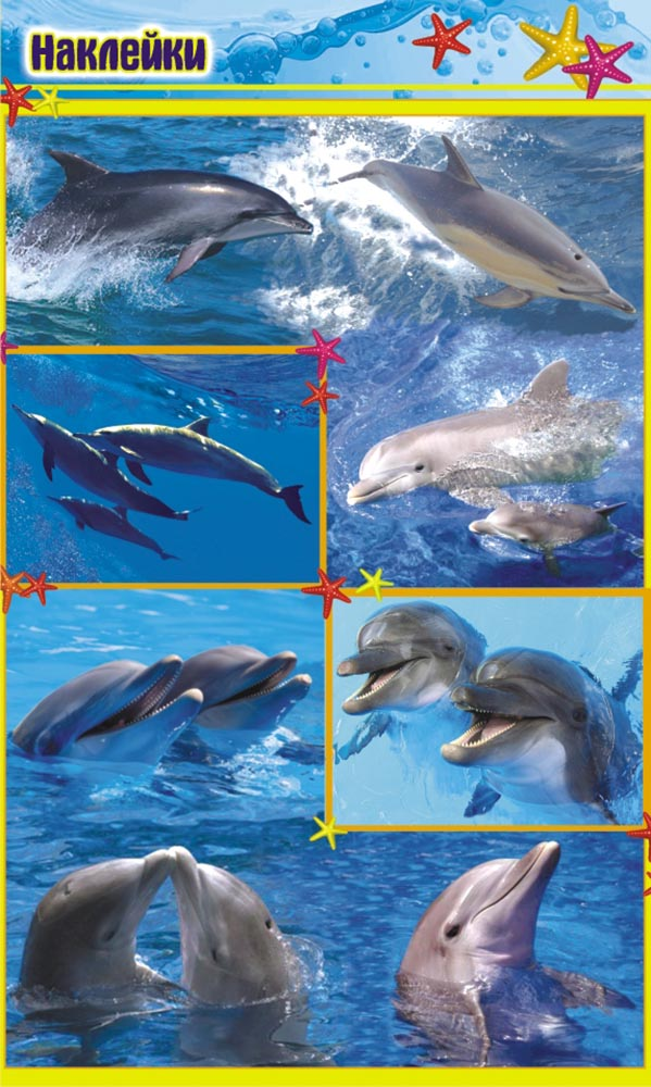 ЛиС Набор наклеек Дельфины НК-1296