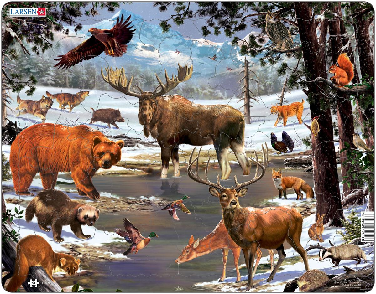 раньше, весь животный мир в картинках земляная белка живет