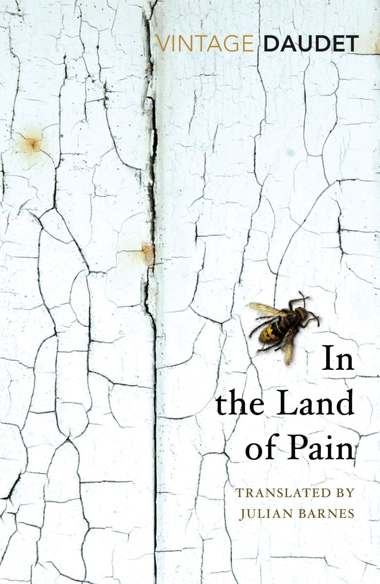 In the Land of Pain недорого
