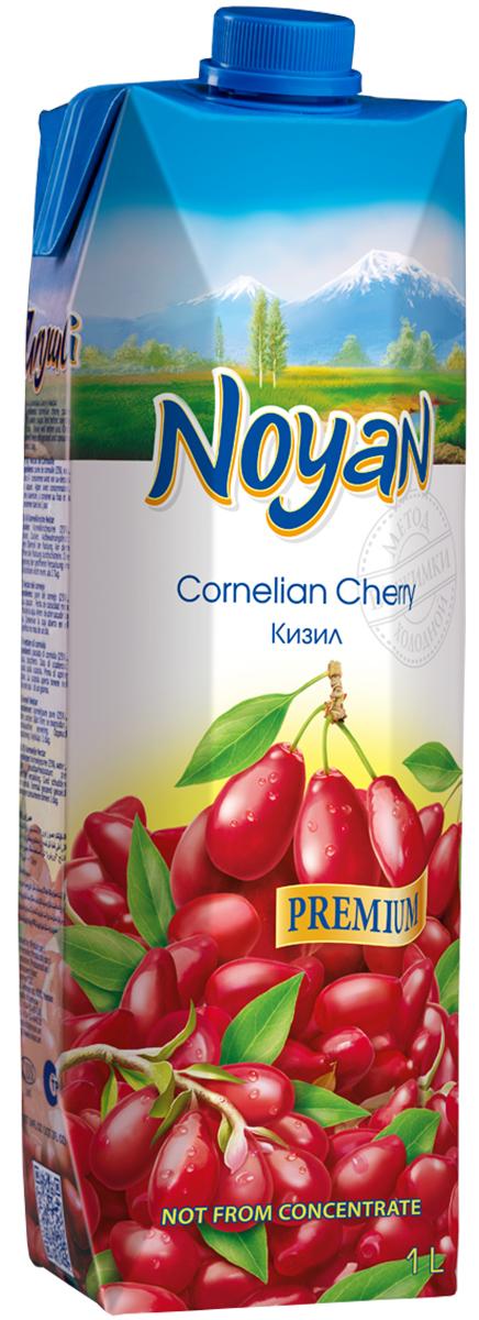 Noyan Кизиловый нектар Premium, 1 л.