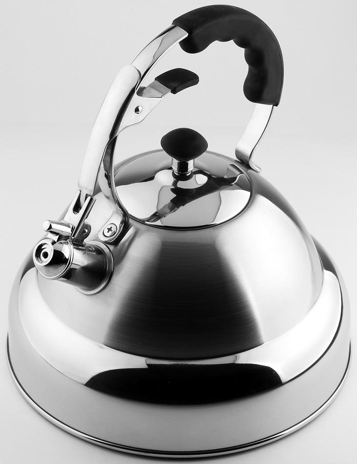 Чайник Carl Schmidt Sohn Aquatic, со свистком, цвет: серый металлик, 5 л чайник carl schmidt sohn aquatic со свистком цвет серый металлик 5 л