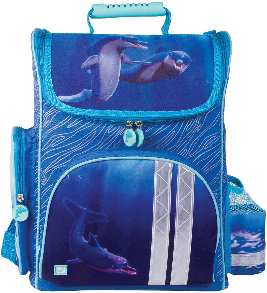 купить Brauberg Ранец школьный Дельфин 226263 по цене 2265 рублей