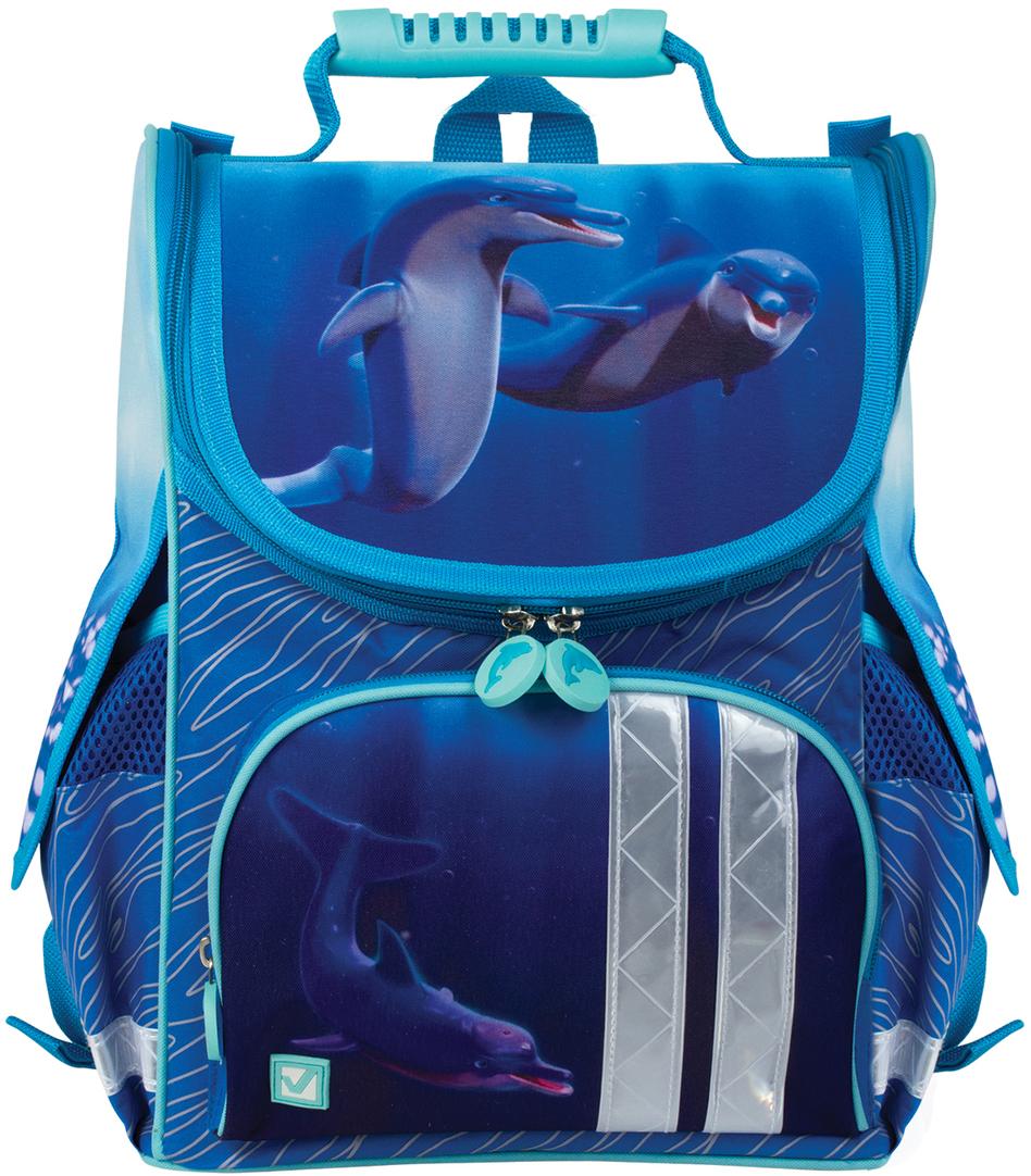 купить Brauberg Ранец школьный Дельфин 226265 по цене 2299 рублей