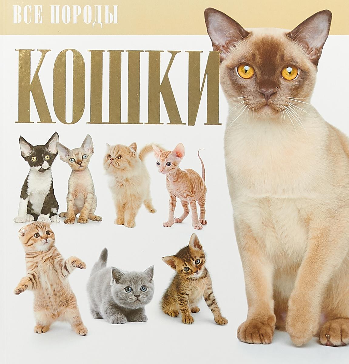 атлас пород кошек с фотографиями задобрить собаку