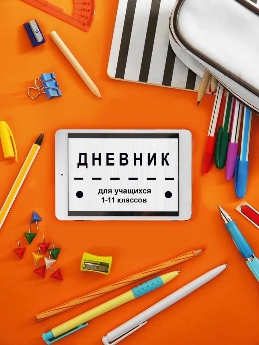 BG Дневник школьный Школьный урок цвет оранжевый цена и фото
