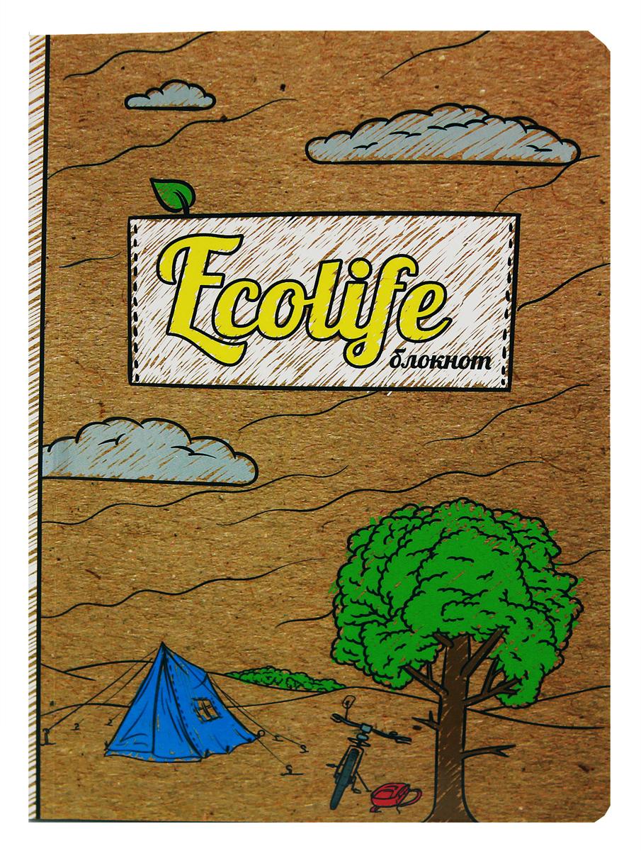 Prof Press Блокнот Ecolife-1 64 листа