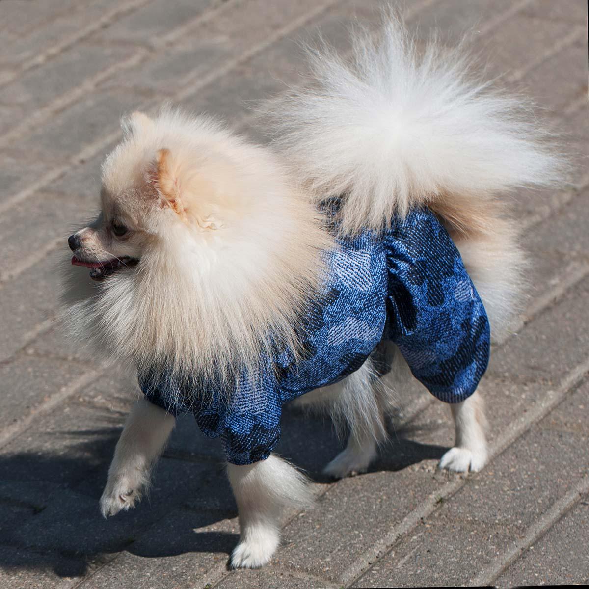 Комбинезон для собак Dogmoda Мегаполис унисекс цвет  синий  Размер 5