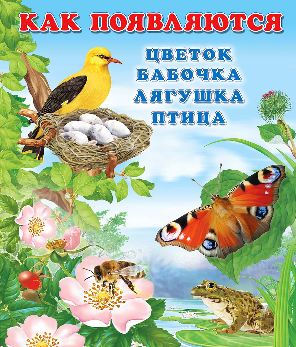 И. Гурина Как появляются цветок, бабочка, лягушка, птица