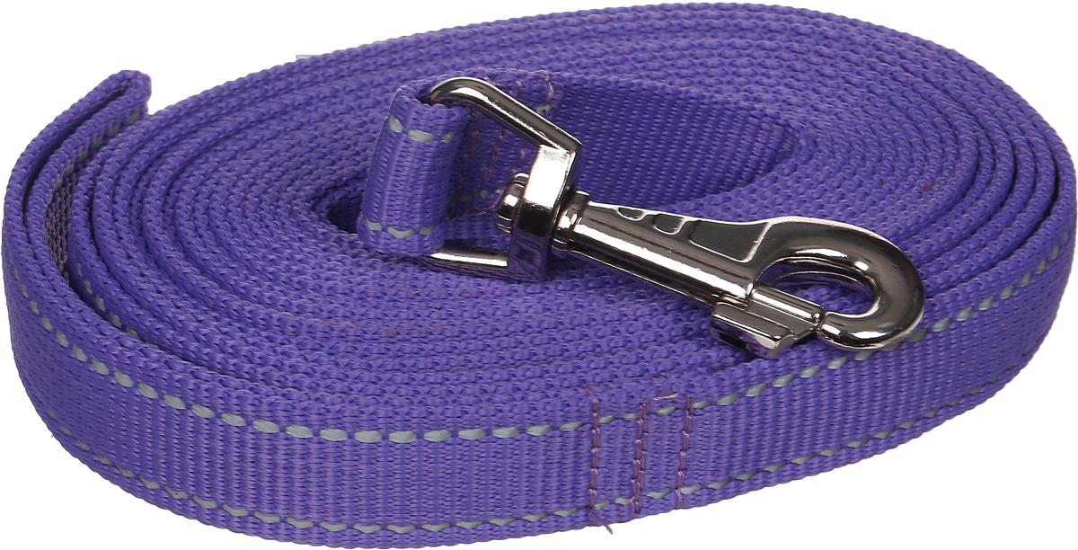 Поводок капроновый для собак Аркон, цвет: фиолетовый, ширина 2,5 см, длина 5 м поводок капроновый для собак аркон цвет розовый ширина 2 см длина 5 м