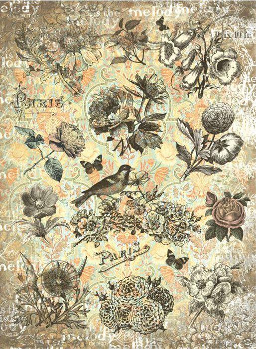 Рисовая бумага для декупажа Craft Premier Мелодичные цветы, формат А3 рисовая бумага для декупажа craft premier шебби розы a3
