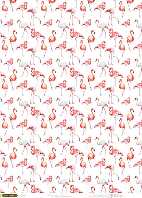 Рисовая бумага для декупажа Craft Premier Фламинго, формат А3 рисовая бумага для декупажа craft premier шебби розы a3