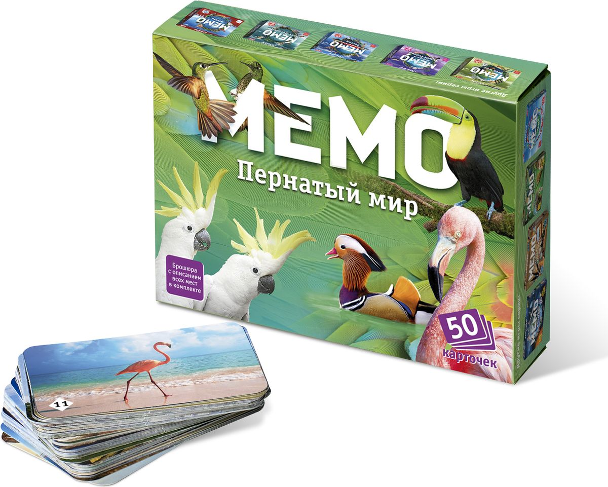 Нескучные игры Обучающая игра Мемо Пернатый мир