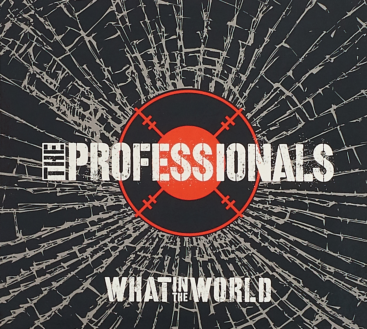 The Professionals Professionals. What In World