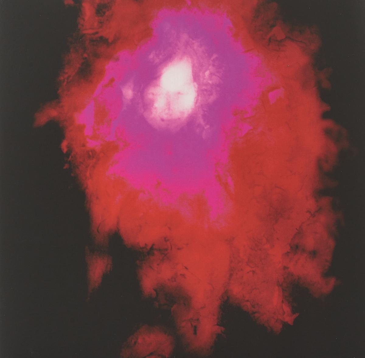 Porcupine Tree Porcupine Tree. Up The Downstair. Remaster (2 LP) the flamboya tree