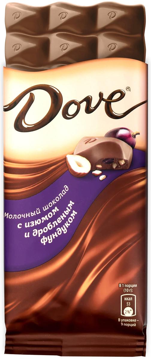 купить Dove молочный шоколад с фундуком и изюмом, 90 г недорого