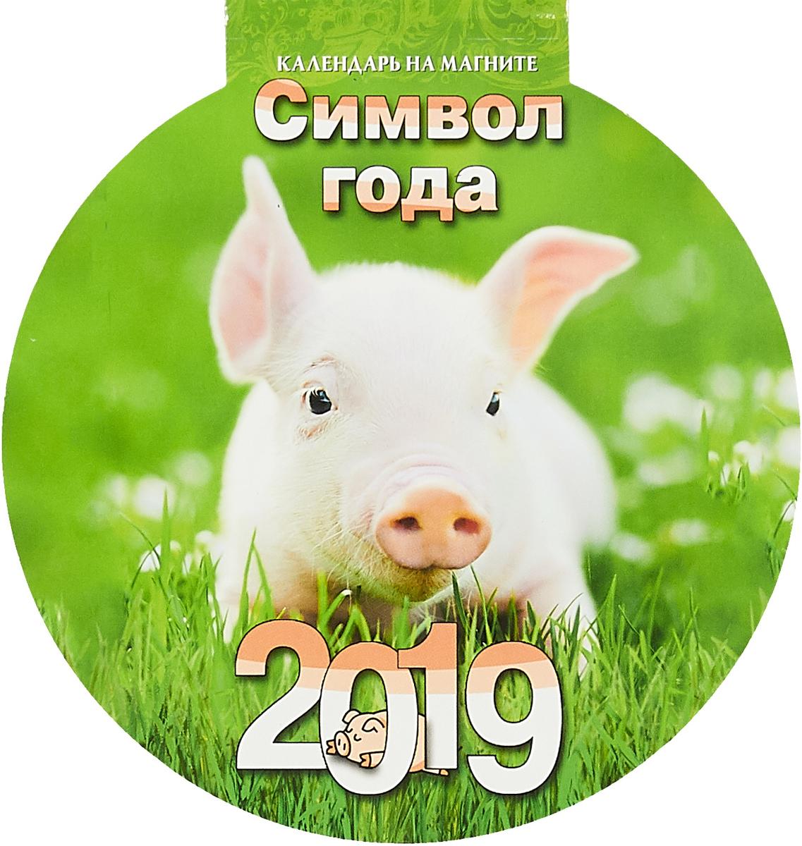 Символ года. Вид 3. Календарь на магните отрывной с вырубкой 2019