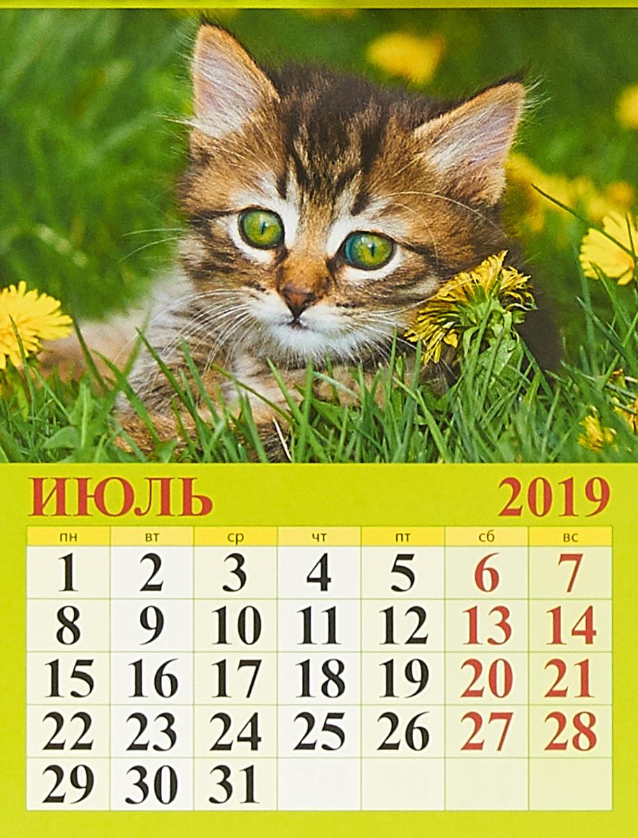 Прикольные картинки на календарь