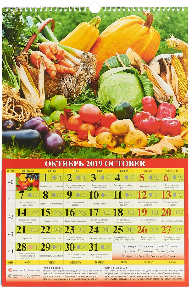 Садово-огородный лунный календарь (320*480). Календарь 2019 Календарь настенный перекидной на...
