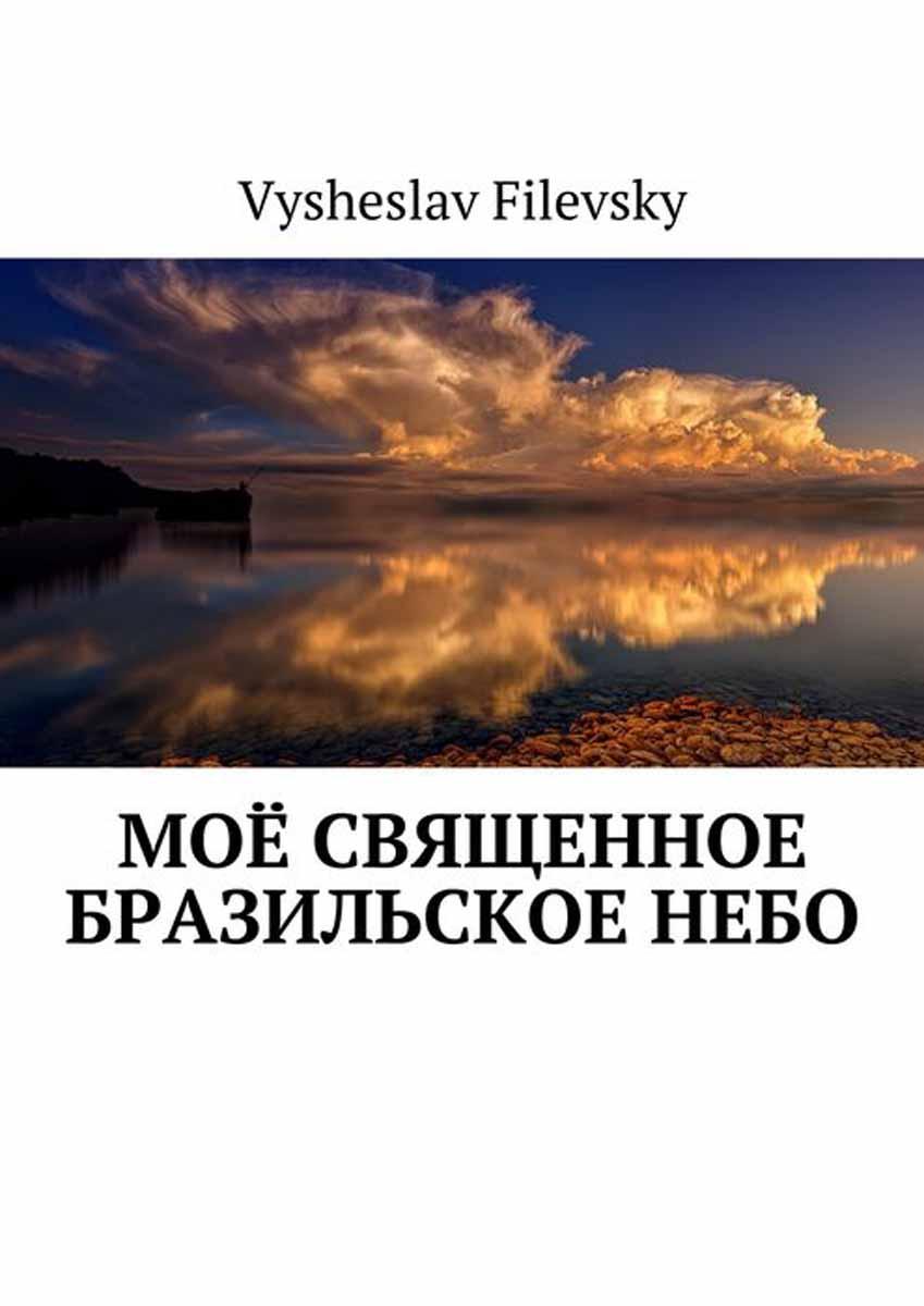 Filevsky Vysheslav Моё священное бразильское небо букет счастье моё