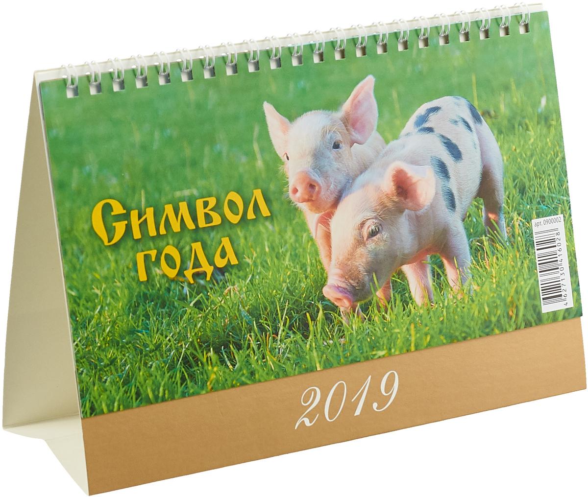 Символ года. Вид 2 (200*140). Календарь (2019