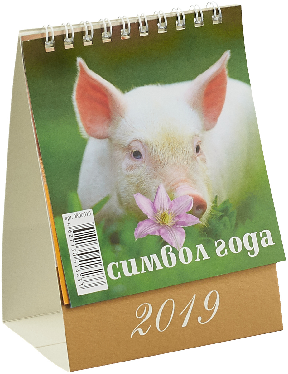 Символ года. Вид 2 (100*140). Календарь 2019